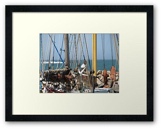 Look through the ropes by Colin Van Der Heide