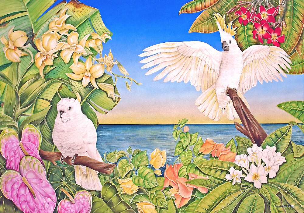 Sulfer-crested Cockatoos by joeyartist