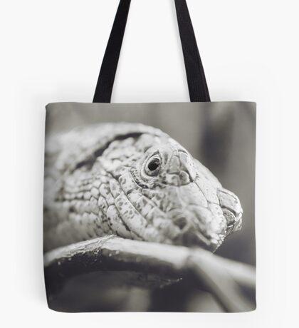Southeastern Girdled Lizard Tote Bag