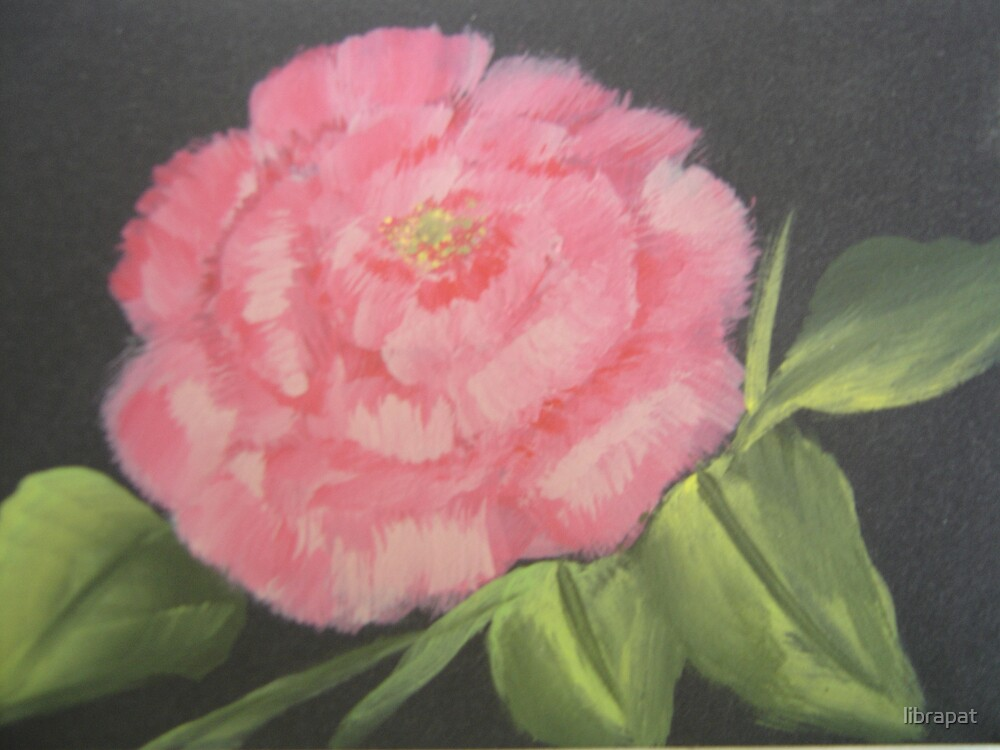 Handpainted Picture of Pink Rose by librapat