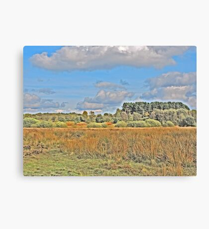 Nature for Artistic Needs Canvas Print