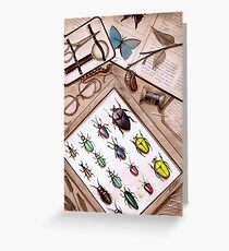 Insect Collector Greeting Card