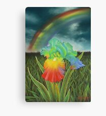Rainbow Iris Canvas Print
