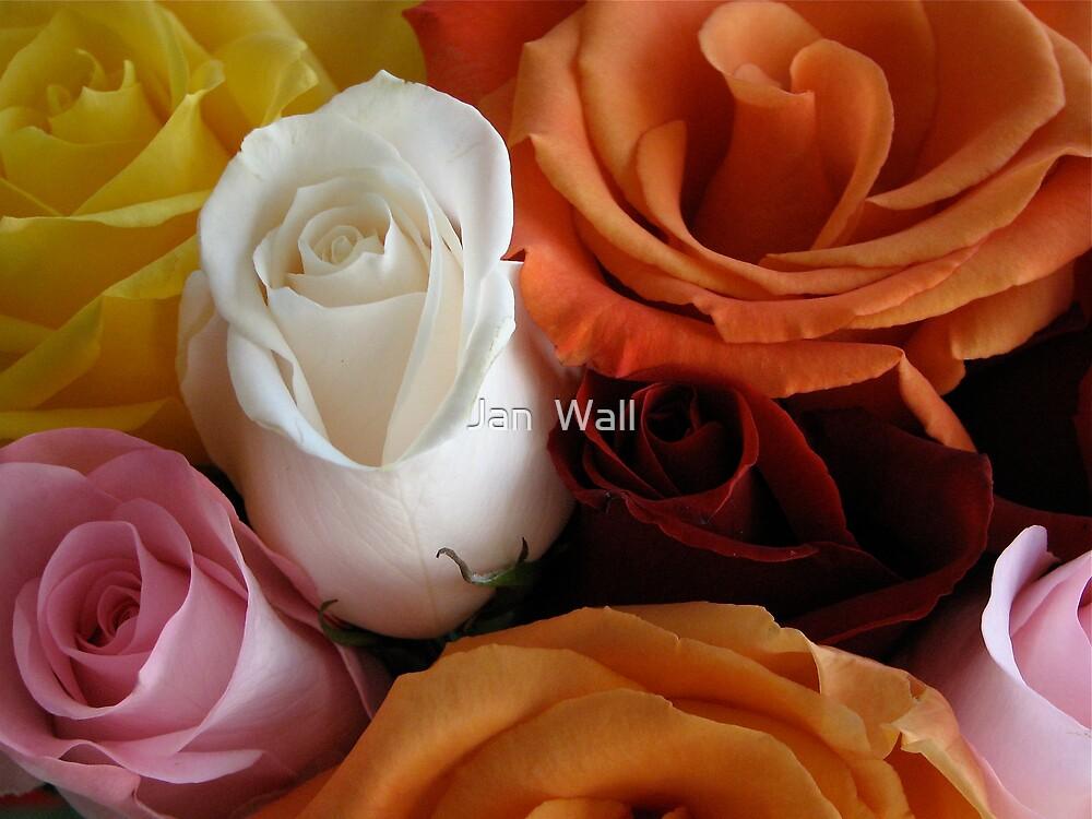 Bouquet by Jan  Wall