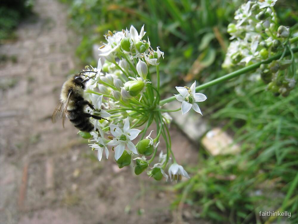 A bee-sy Day by faithinkelly