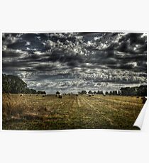 haybales Poster