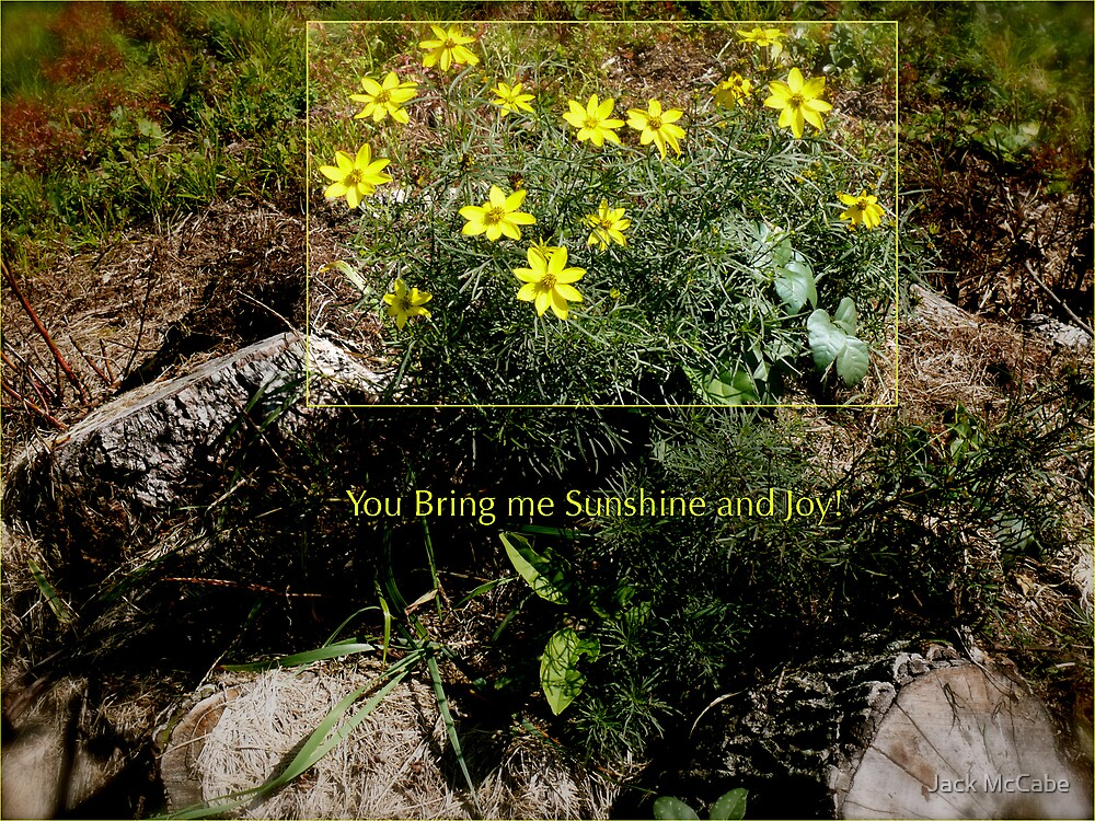 *Moonbeams* You Bring Me Sunshine and Love ~ All About Flowers!  by Jack McCabe
