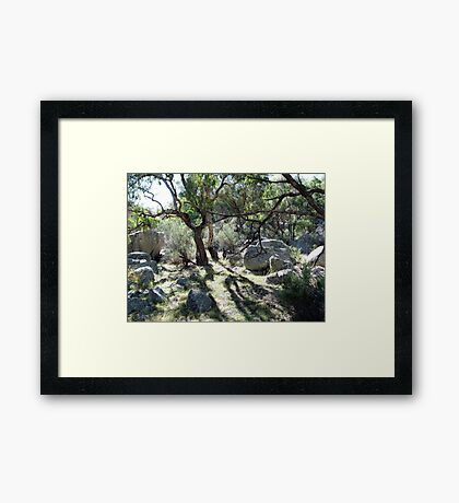 Morning at Mt Yarrowyck Framed Print