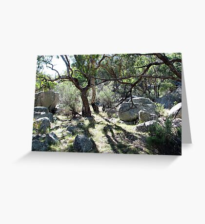 Morning at Mt Yarrowyck Greeting Card