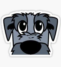 DigiDog's Dublin Wetbeard - Close up Sticker