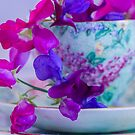 Sweet Pea Teacup by DIANE  FIFIELD