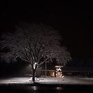 A Snowy Tree by AsteriskZero