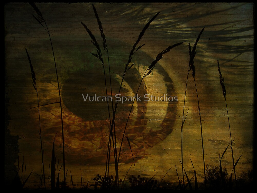 Dusky Eyes by Vulcan Spark Studios