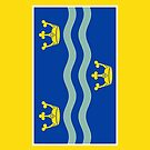 Cambridgeshire Flag Phone Cases by mpodger