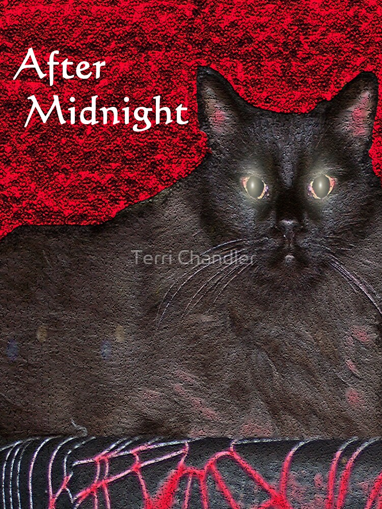 After Midnight by DanceswithCats