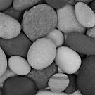 Stone Soup Grayscale by Kathilee