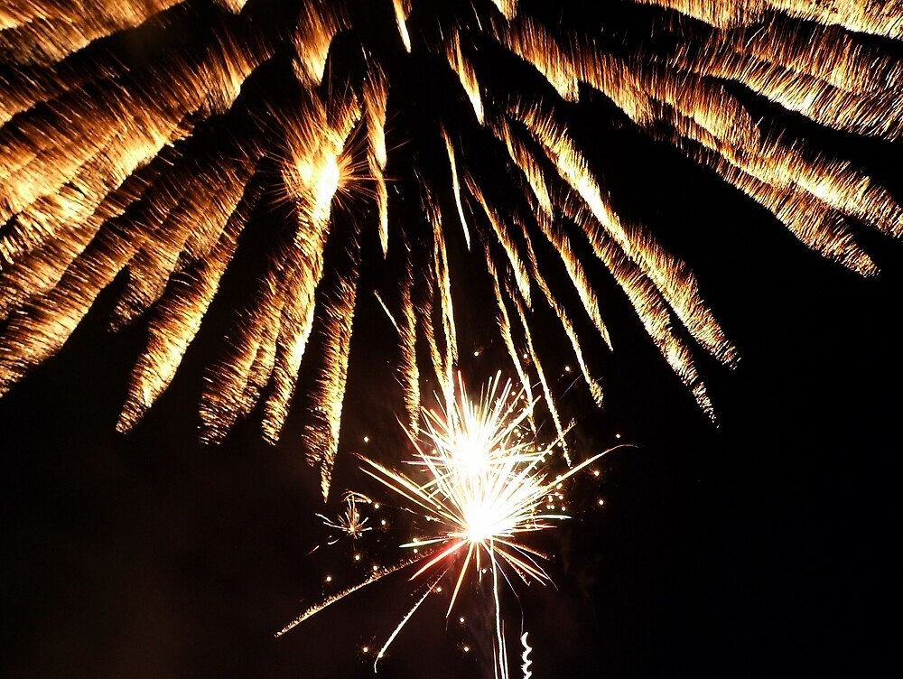 Fireworks 5 by Karl Rose