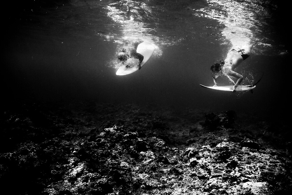Synchronized Diving  by Rae Marie Threnoworth