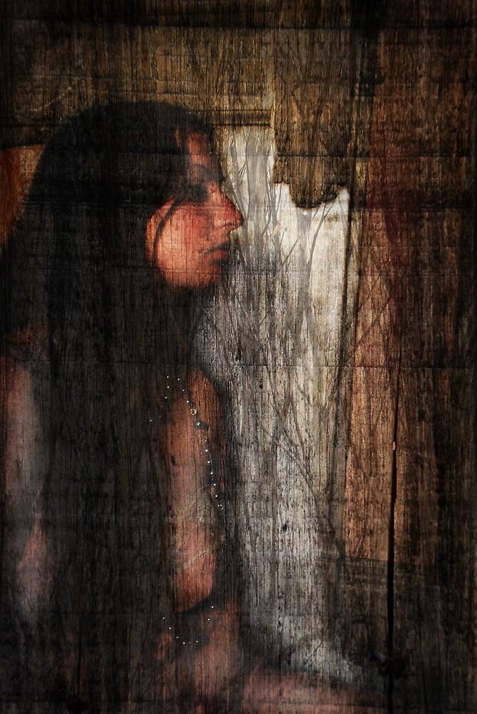 Moonlapse by Hayley Joyce