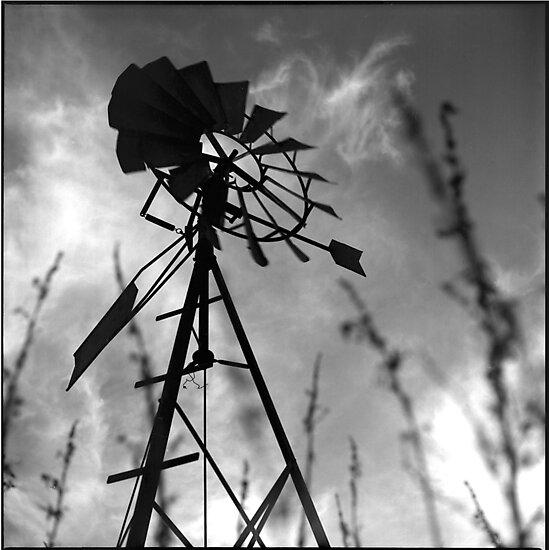 windmill • burgundy • 2007 by lemsgarage