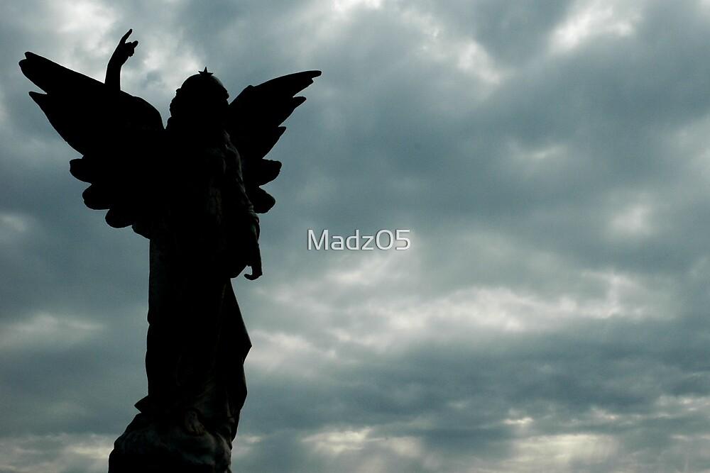 Angel by Madz05