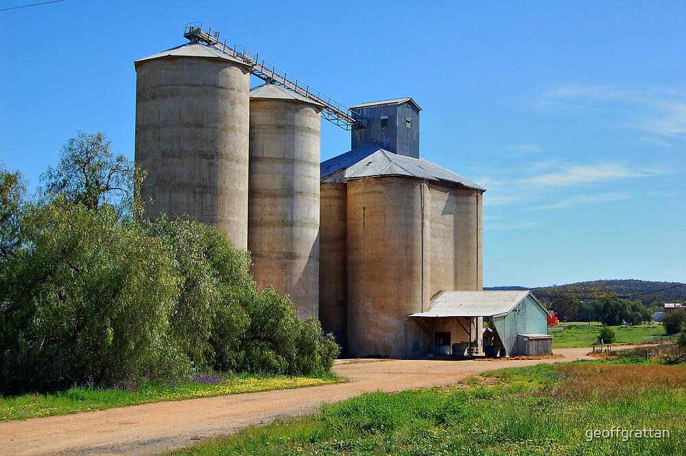 Wheat Silos  Grenfell NSWales by geoffgrattan