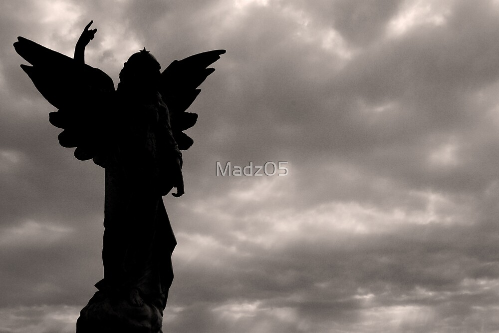 Angel Black & White by Madz05