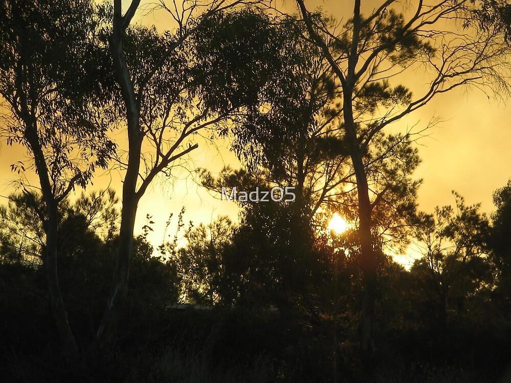 Sunset by Madz05