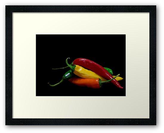 Hot Colors by jerry  alcantara