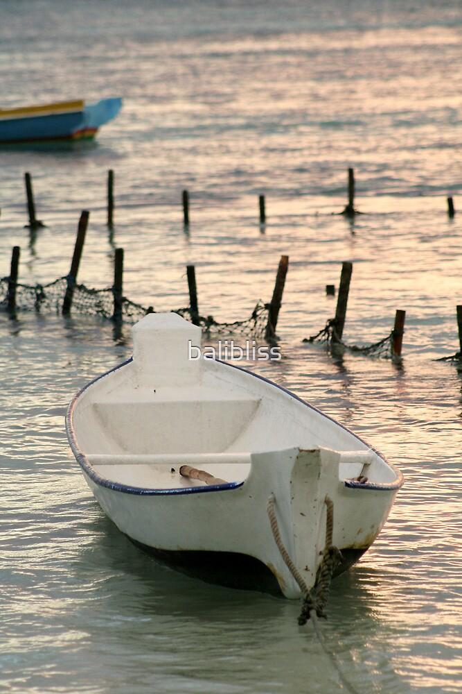 little white boat  by balibliss