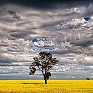 Dimboola floral scape. by Victor Pugatschew