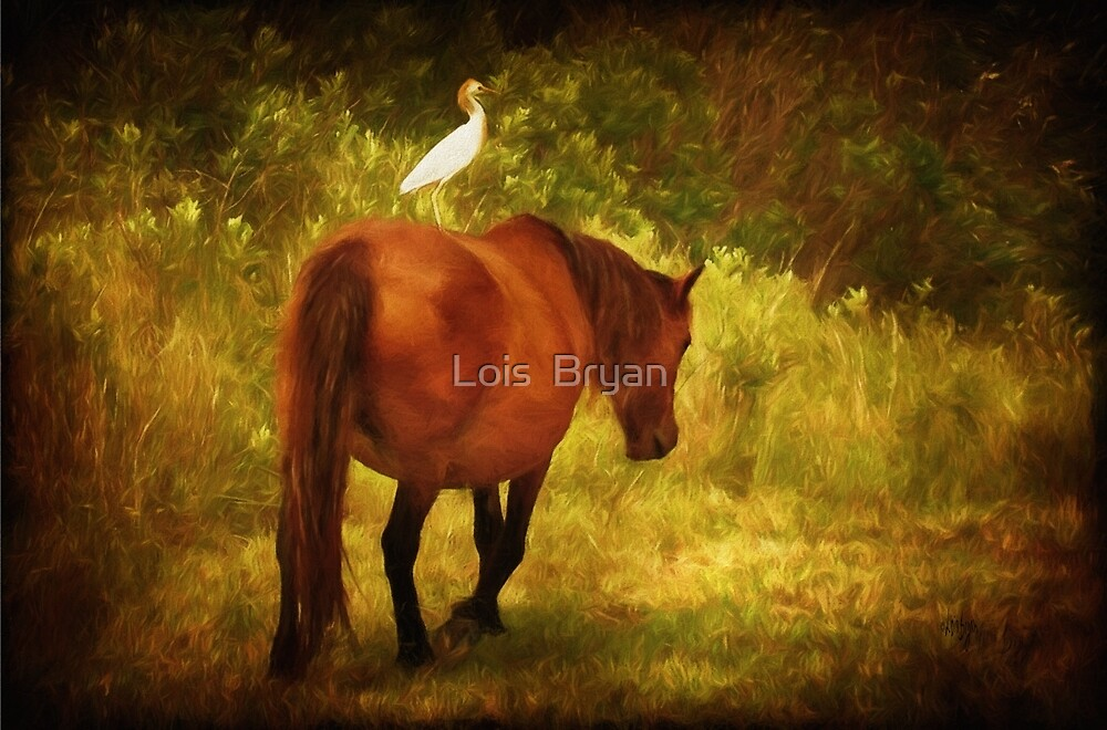 Hitchin' a Ride by Lois  Bryan