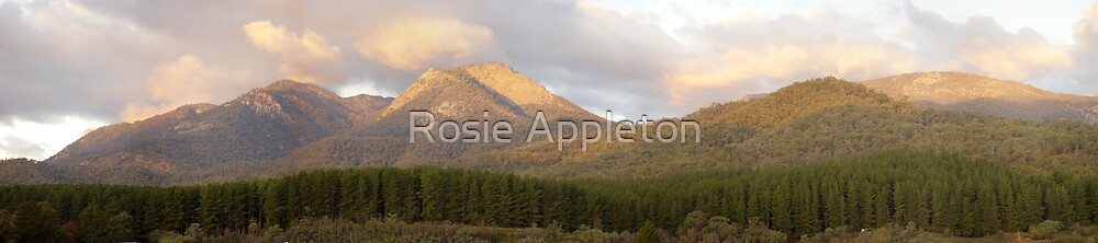 Sunset on Mt Buffalo by Rosie Appleton