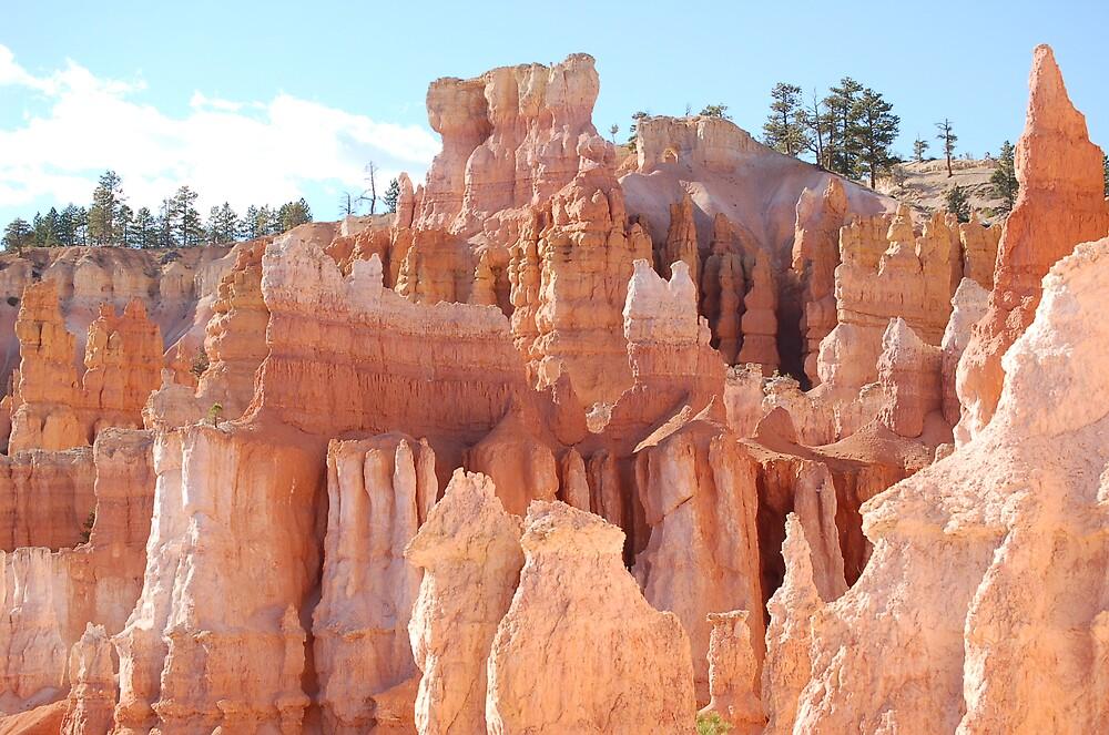 Hoodos at Bryce Canyon National Park, Utah by ozgard
