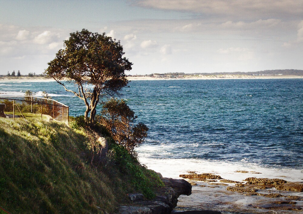 The Entrance, New South Wales by adam pearson