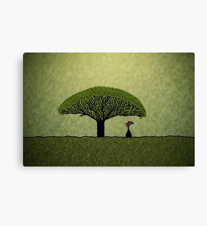 Socotra Canvas Print