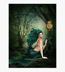 Hollow deep in the Woods Photographic Print