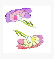 Frilly floppy flowers Photographic Print