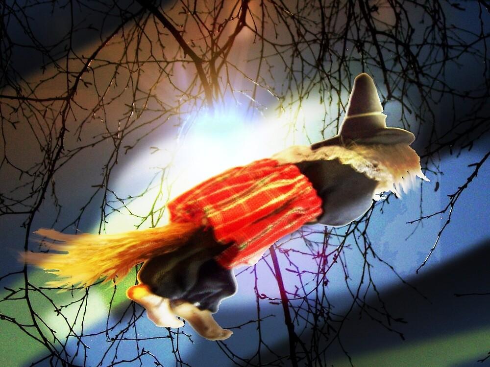 Turbo witch by alaskaman53