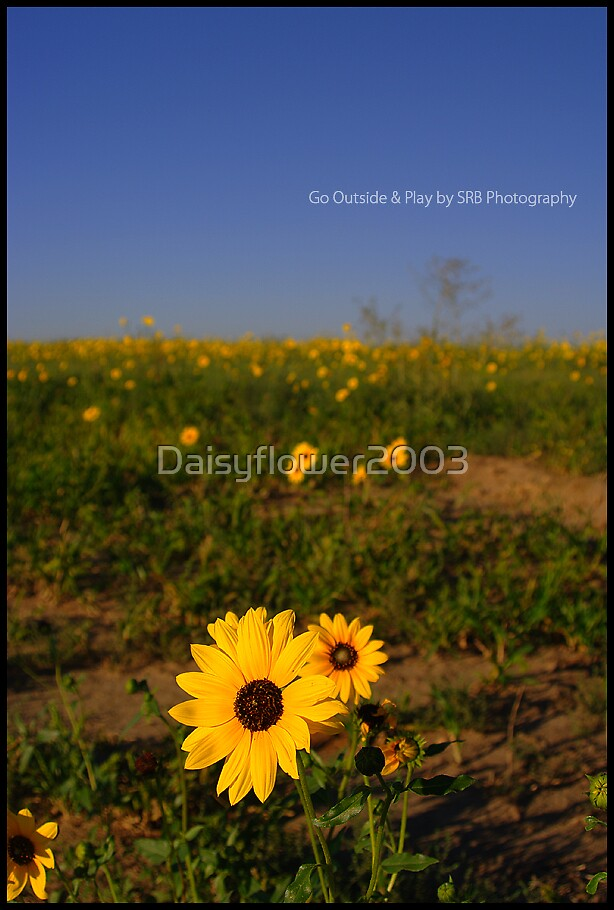 Go Outside & Play by Daisyflower2003
