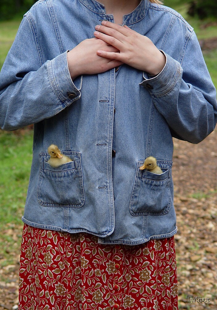 Pockets of Duckling 2 by InKibus