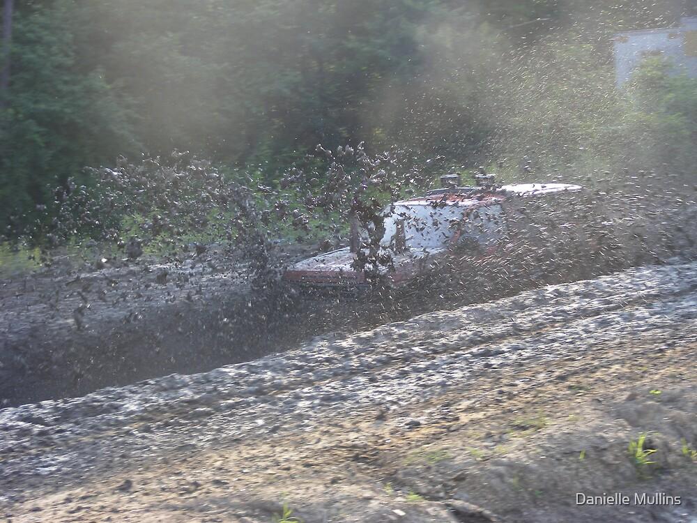 flying mud by Danielle Mullins