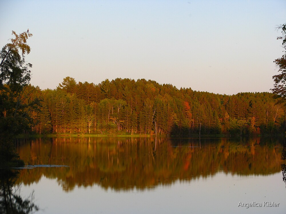Serene Reflections by Angelica Kibler