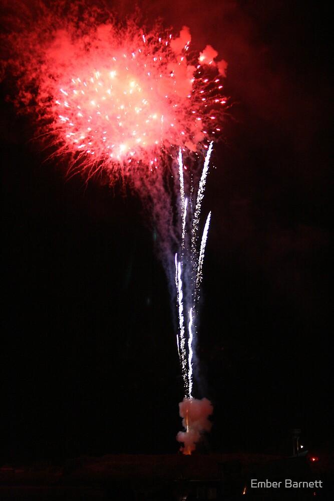 fireworks #2 by Ember Barnett