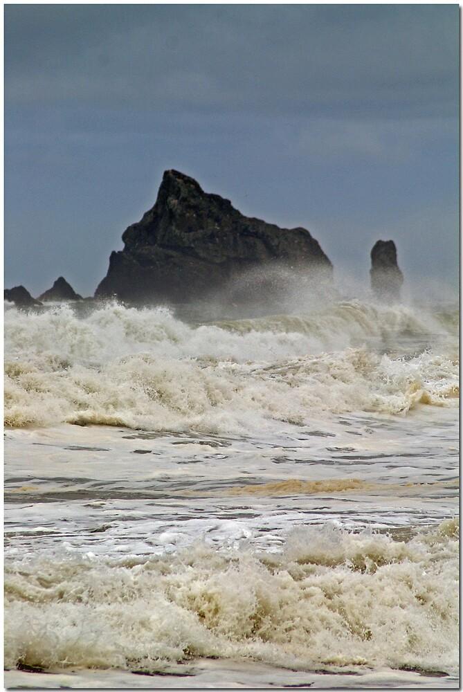 THE BEACH by MsLiz