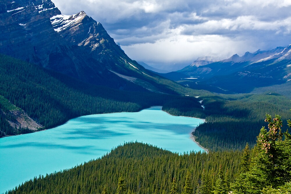 PEYTO LAKE by Sandy Hill