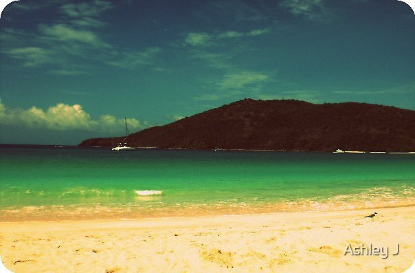 Flamenco Beach by Ashley J