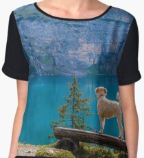 Adventure Dog Women's Chiffon Top