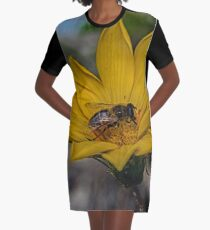 Yellow flower and bee - springtime Graphic T-Shirt Dress