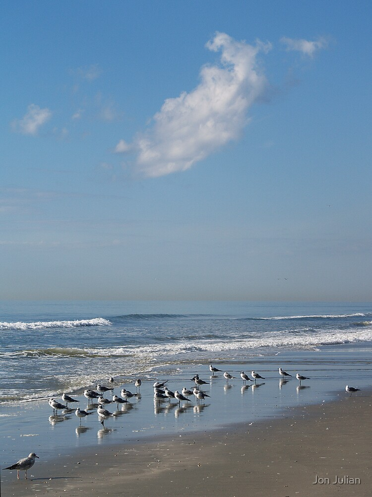 Gulls on a Morning Beach by Jon Julian